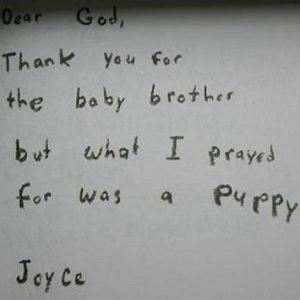 I prayed for a puppy